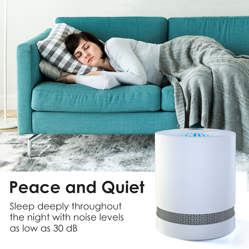 Large-Room-Air-Purifier-with-True-HEPA-Filter-Remove-Allergies-Odors-Noise-free miniature 17