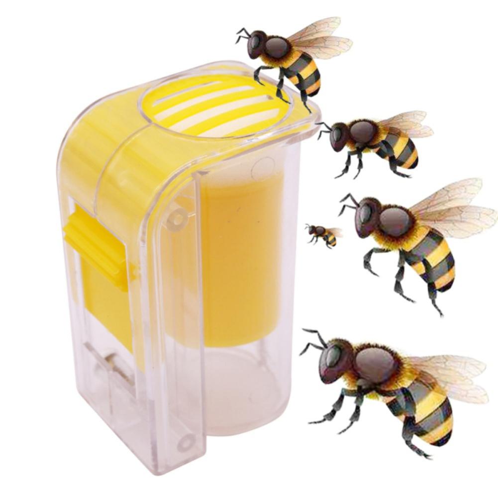 Beekeeping Equipment 5 Pcs Queen Bee Catcher Clip Cage Catching Tool